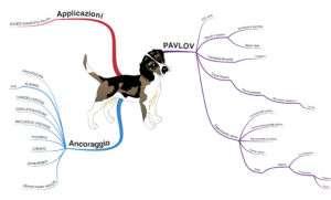 Mappa mentale cane di pavlov ancoraggio